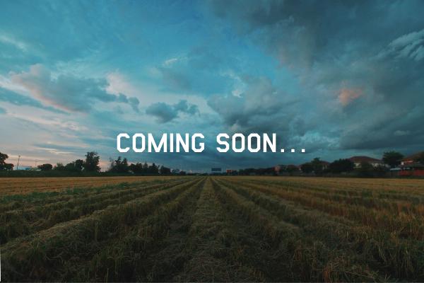 AGRI WARRIORS | 攻める農業